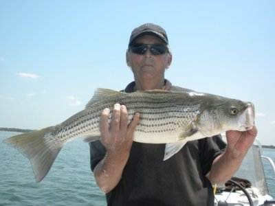 Lake Texoma Striper Fishing Pictures